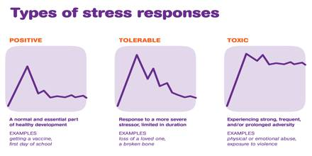 the many types of stress that affect students Get information on stress-management tips, the effects on the body, and stress types (teen, job, ptsd stress comes in many forms and affects people of all ages.
