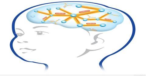 Brain enhancer supplements philippines picture 9