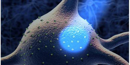 Optogenetics Technology