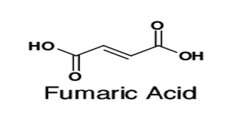 Definition of Fumaric Acid