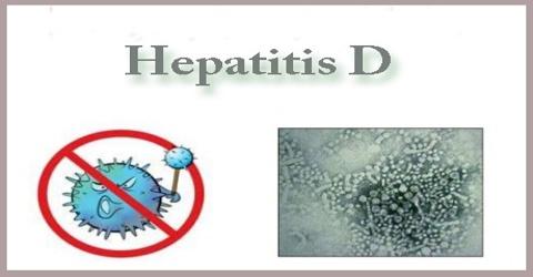 Describe about Hepatitis D
