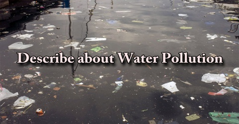 Describe about Water Pollution
