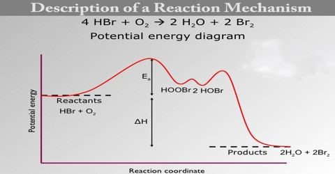 Description of a Reaction Mechanism