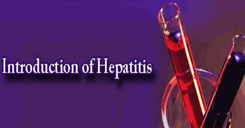 Introduction of Hepatitis