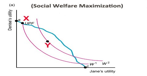 Social Welfare Maximization