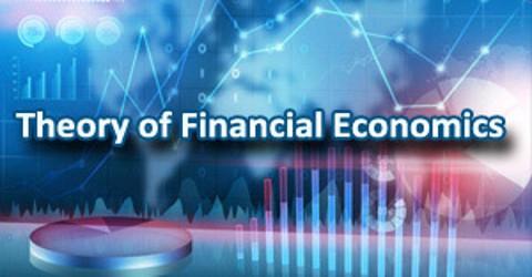 Theory of Financial Economics