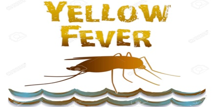 the insect born tropical disease known as the yellow fever When us commanders in cuba refused to redeploy their troops to higher ground — hardly anyone believed, yet, that yellow fever was spread by mosquitoes, but the disease was thought to prosper in the lowlands — a subordinate officer named teddy roosevelt wrote a plaintive letter to the secretary of war.