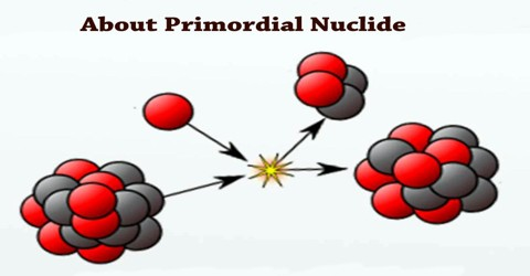 About Primordial Nuclide