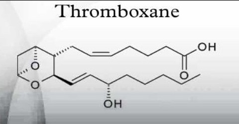 About Thromboxane