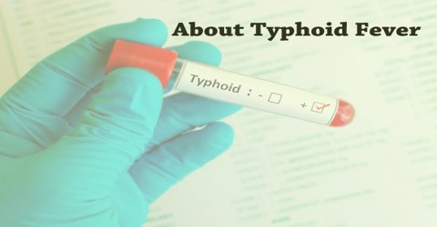 About Typhoid Fever