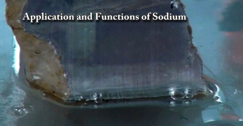 Application and Functions of Sodium