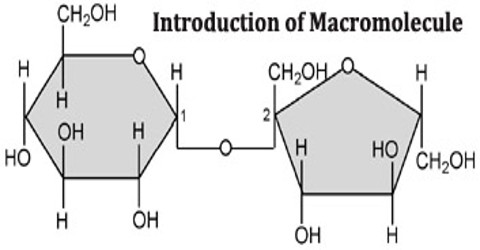 Introduction of Macromolecule