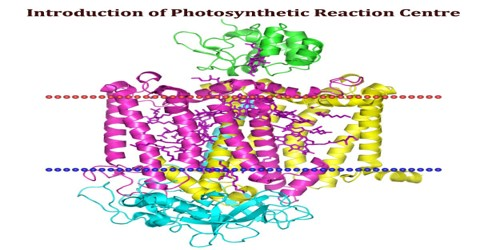 Introduction of Photosynthetic Reaction Centre