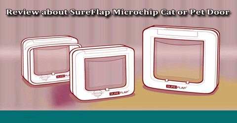 Review about SureFlap Microchip Cat or Pet Door