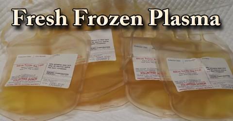 FFP: Fresh Frozen Plasma
