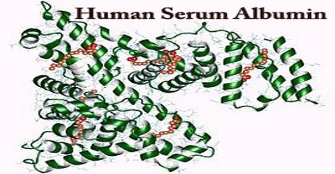 HSA: Human Serum Albumin