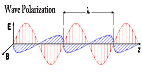 Wave Polarization