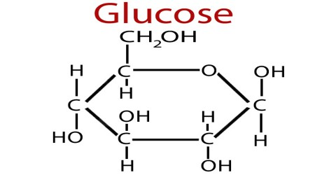 About Glucose