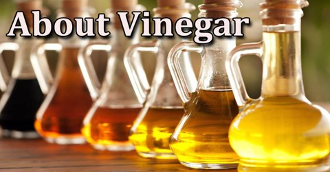 About Vinegar