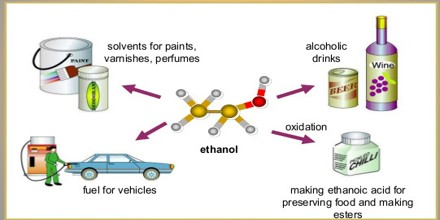 What Is Ethanol >> Uses Of Ethanol Assignment Point