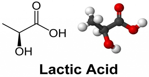 About Lactic Acid