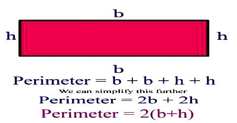 How to Calculate the Perimeter of a Rectangle?