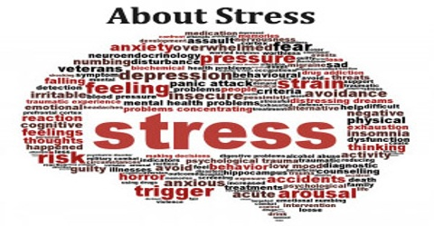 About Stress