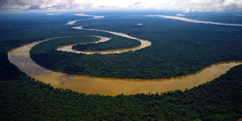 The river amazon homework help