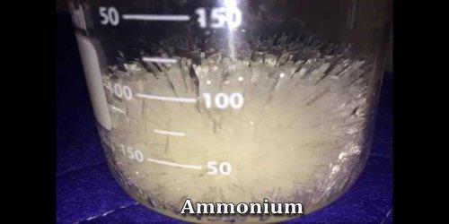 Ammonium