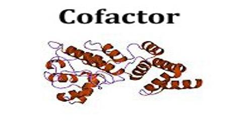 Cofactor