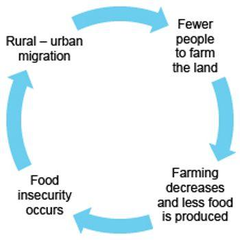 Case study rural to urban migration