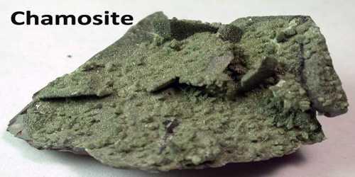 Chamosite