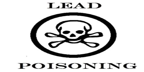 Lead Poisoning in Human Body