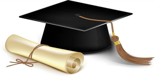 Scholarship Instructions: Candidate's Role Section