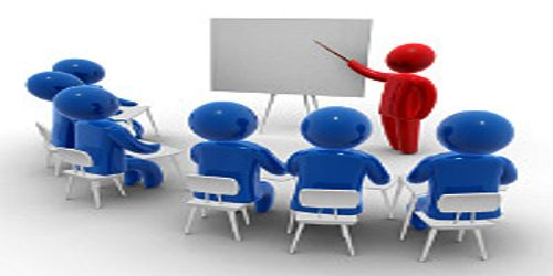 How to Train the Employees of the Company?