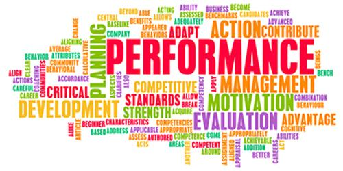 Annual Performance Appraisal System