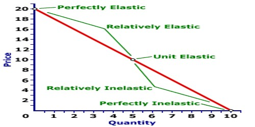 Concept of Elasticity of Demand