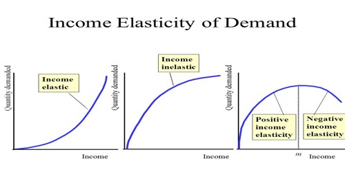 Important Uses Of Income Elasticity Of Demand Assignment Point