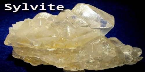 Sylvite