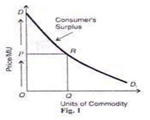 surplus theory