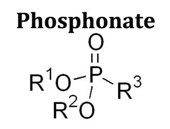 Phosphonate