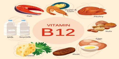 Vitamin B12 Assignment Point