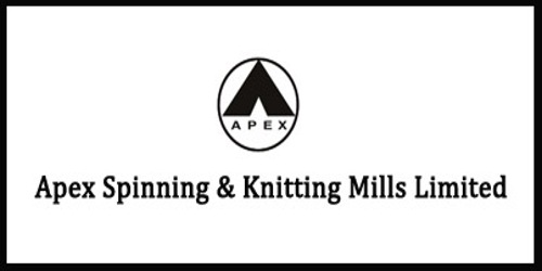 Annual Report 2010 of Apex Spinning & Knitting Mills Limited