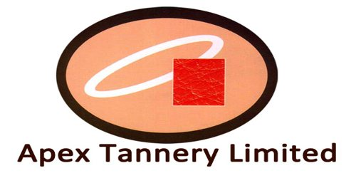 Annual Report 2013 of Apex Tannery Limited