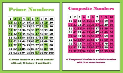 prime and composite numbers assignment point