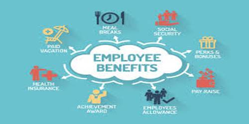 employee benefits term paper Life, short-term disability, and long-term disability insurance benefits  and public-sector employee benefit programs  bureau of labor statistics | office of.