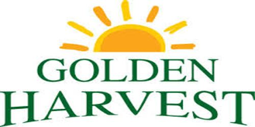 Annual Report 2015 of Golden Harvest Agro Industries Limited