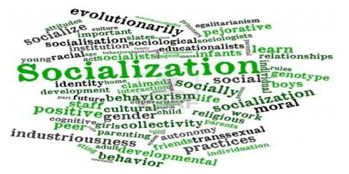 Planned socialization and Natural Socialization