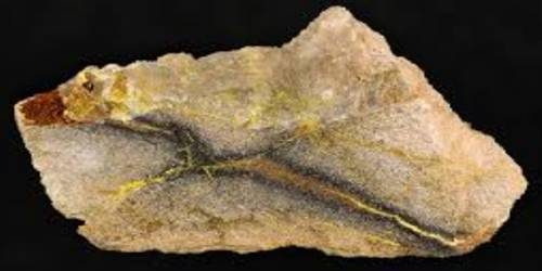 Coffinite: Properties and Occurrences