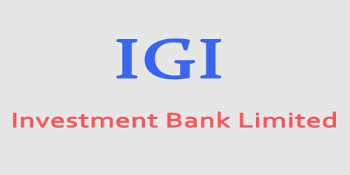 Annual Report 2008 of IGI Investment Bank Limited